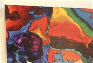Echantillon d'impression sur toile de WER-E2000UV