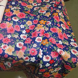 Echantillon 1 d'impression numérique sur textile par l'imprimante numérique WER-EP7880T