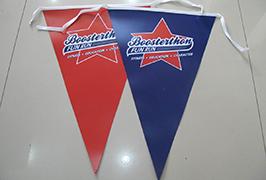 Bannière Flag Cloth imprimée avec une imprimante à solvant écologique de 1,8 m (6 pieds) WER-ES1801 2