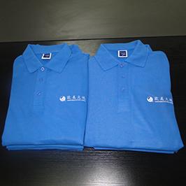 Impression personnalisée de t-shirts de polo par l'imprimante de t-shirts A3 WER-E2000T
