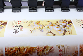 Vinyle autocollant imprimé par une imprimante à solvant écologique de 1,8 m (6 pieds) WER-ES1802