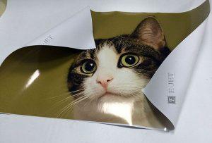 Échantillon d'impression en vinyle d'une imprimante à solvant eco de 1,6 m